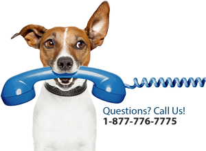 Call us for questions! Dog holding phone mascot